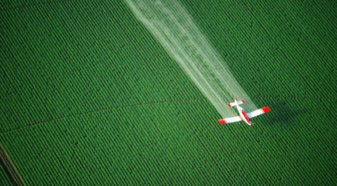 Insecticide Product